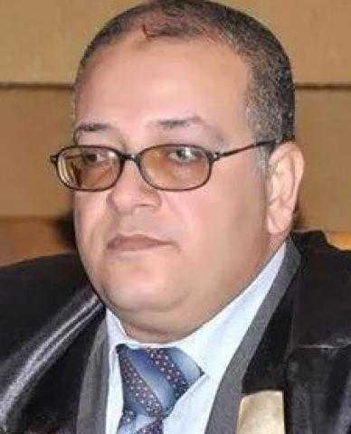 د. شريف درويش اللبان.. يكتب.. في فهم الإسلاموفوبيا والإسلام السياسي