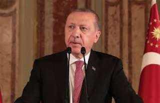 وزير الخارجية يستنكر تصريحات أردوغان غير المسئولة