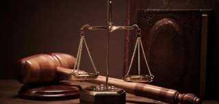 تأجيل محاكمة 7 متهمين في خلية داعش الإرهابى
