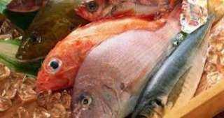 نرصد أسعار الأسماك في سوق العبور اليوم ١٥ سبتمبر