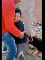 بالفيديو.. ترويع طفل من ذوي الاحتياجات الخاصة باستخدام كلب مفترس