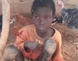 بالفيديو.. طفل نيجيري يعيش عامين على بقايا الأعلاف وروث الماشية