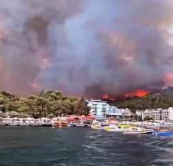 بالفيديو.. تركيا.. ارتفاع حصيلة قتلى حرائق الغابات إلى 8